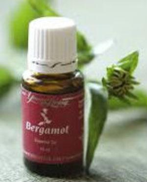 Young Living Bergamot Essential Oil 15 ml