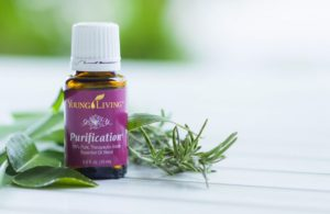 Young Living Purification Essential Oil 5 ml