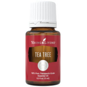 Young Living Tea Tree Essential Oil 15 ml