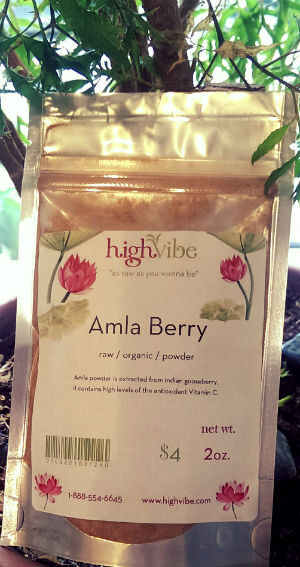 Amla Berry Powder Raw / Organic / High Vibe Bulk 2oz